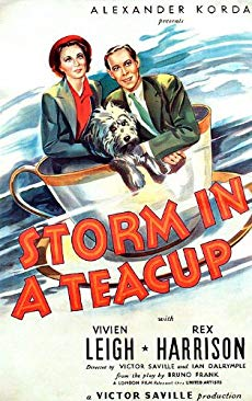 Storm in a Teacup download